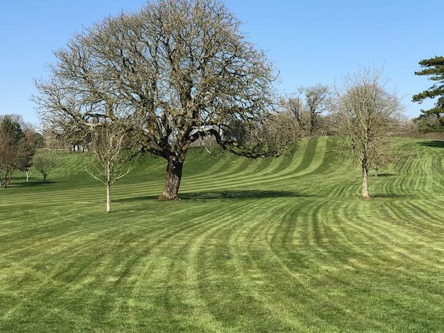 Healthy golf course fields - Golf in Cardiff